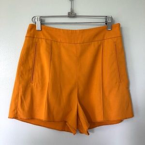 Aritzia Le Fou x Wilfred Mustard Shorts